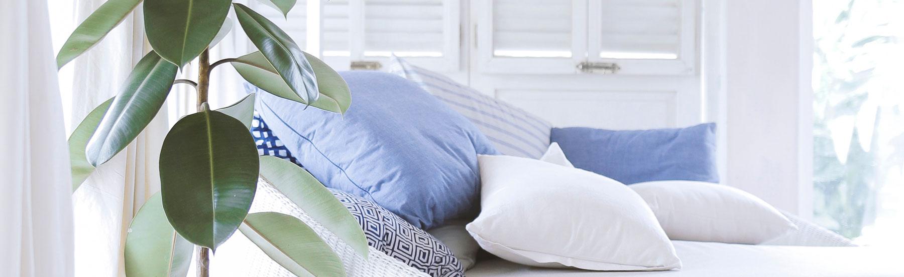 WEBIMAGES: Sept2019-Cozy-Pillows.jpg